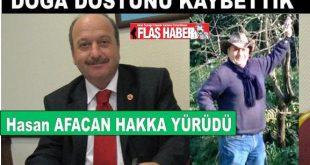 20109, 2014 yılları arasında CHP İBB ve Eyüpsultan Belediye Meclis üyeliği görevini yapan Afacan Çevre ve doğa dostu olarak bir döneme damga vurmuştu.